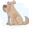 "Geschenk: dogibox ""groß"" - 1 Box"