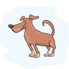 """Geschenk: dogibox """"mittel"""" - 1 Box"""